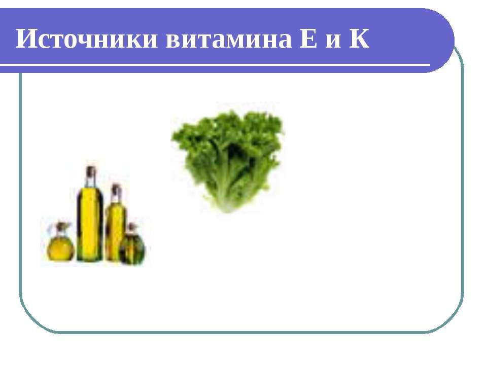 Источники витамина Е и К
