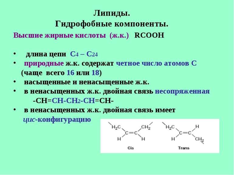 Липиды. Гидрофобные компоненты. Высшие жирные кислоты (ж.к.) RCOOH длина цепи...