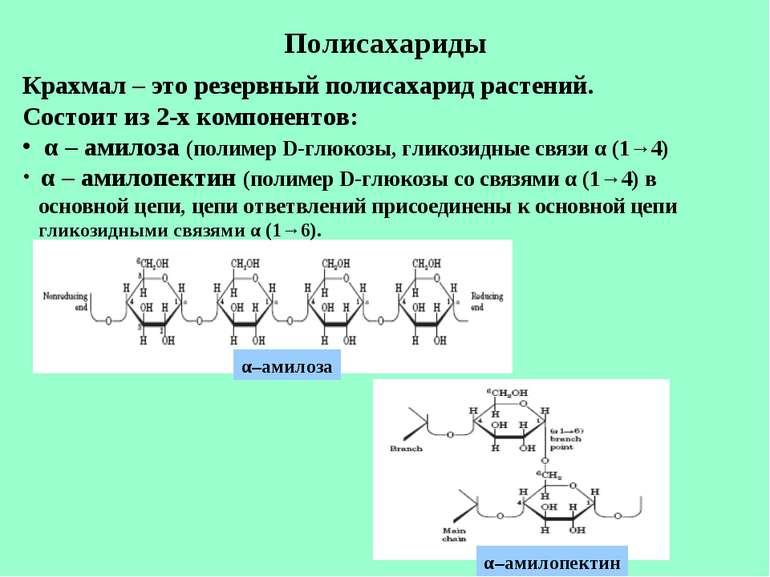 Полисахариды Крахмал – это резервный полисахарид растений. Состоит из 2-х ком...