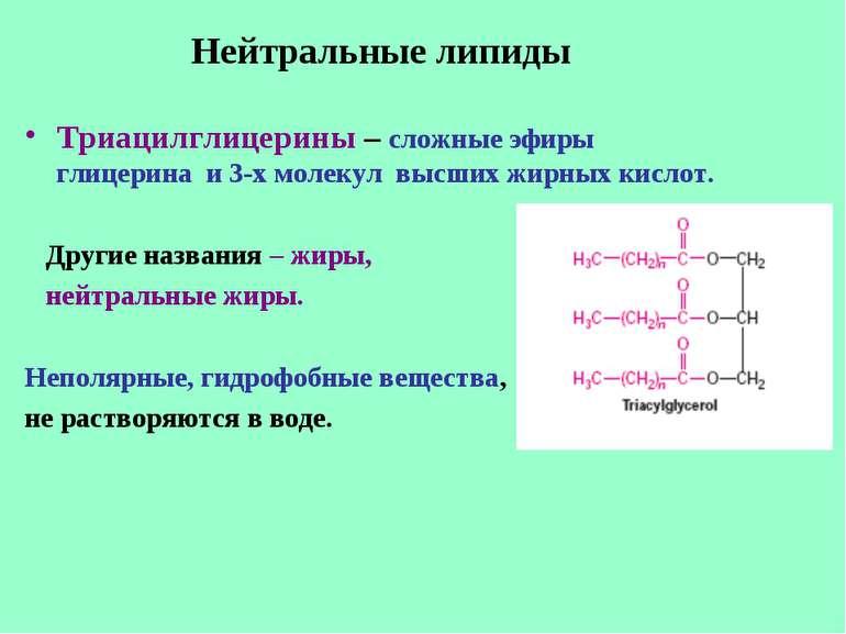 Нейтральные липиды Триацилглицерины – сложные эфиры глицерина и 3-х молекул в...