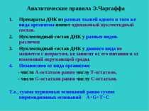 Аналитические правила Э.Чаргаффа Препараты ДНК из разных тканей одного и того...