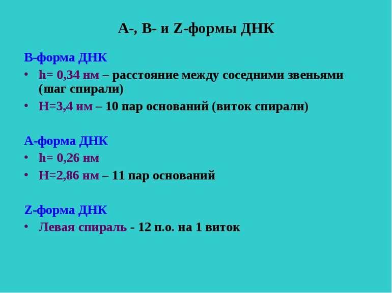 А-, В- и Z-формы ДНК В-форма ДНК h= 0,34 нм – расстояние между соседними звен...