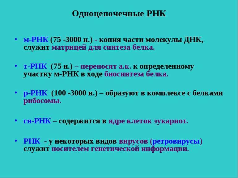 Одноцепочечные РНК м-РНК (75 -3000 н.) - копия части молекулы ДНК, служит мат...