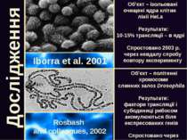 Дослідження Iborra et al. 2001 Rosbash and colleagues, 2002 Об'єкт – ізольова...