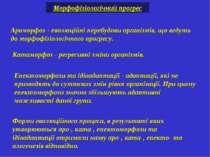 Ароморфоз - еволюційні перебудови організмів, що ведуть до морфофізіологічног...
