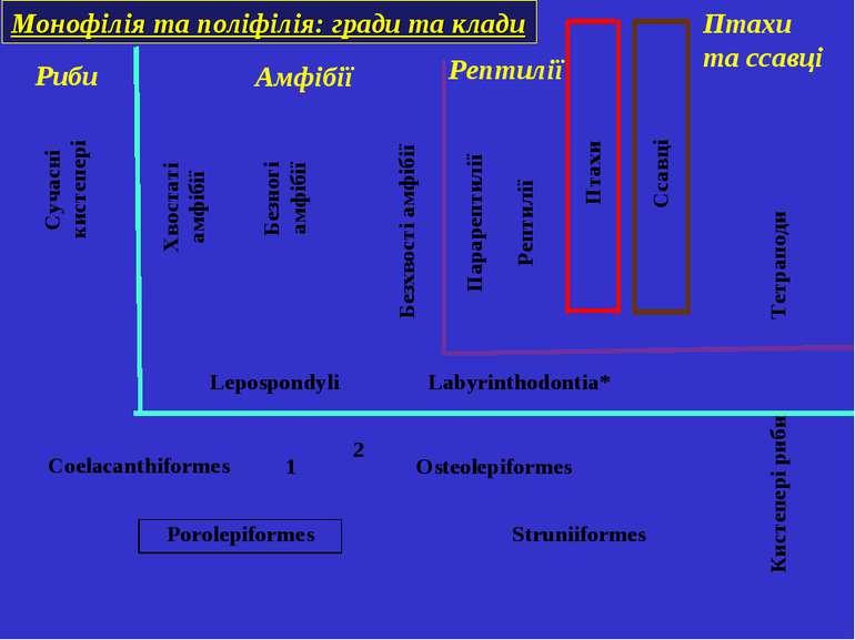 Монофілія та поліфілія: гради та клади Риби Амфібії Рептилії Птахи та ссавці