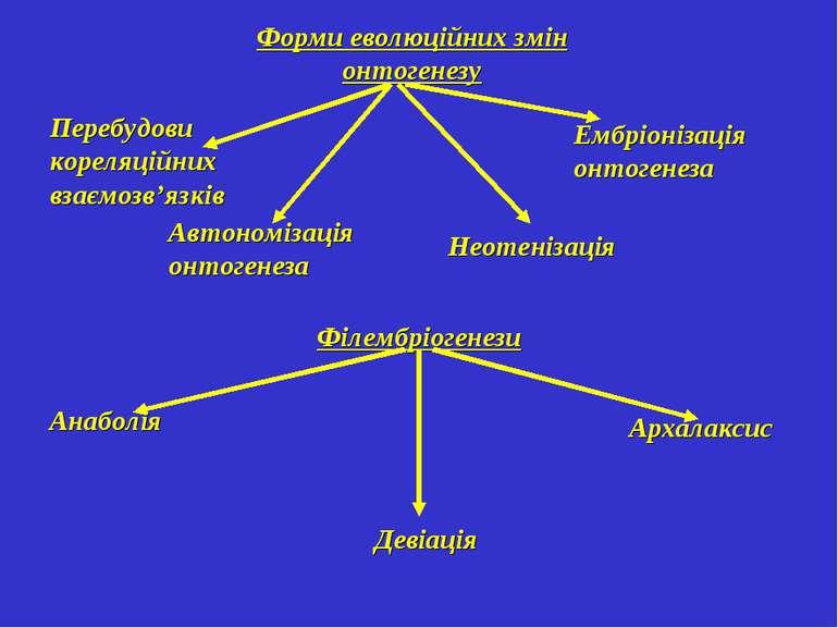 Форми еволюційних змін онтогенезу Ембріонізація онтогенеза Перебудови кореляц...