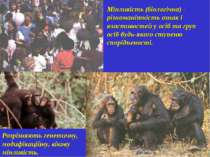 Мінливість (біологічна) - різноманітність ознак і властивостей у осіб та груп...