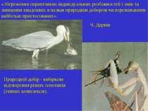 Природній добір - вибіркове відтворення різних генотипів (генних комплексів)....