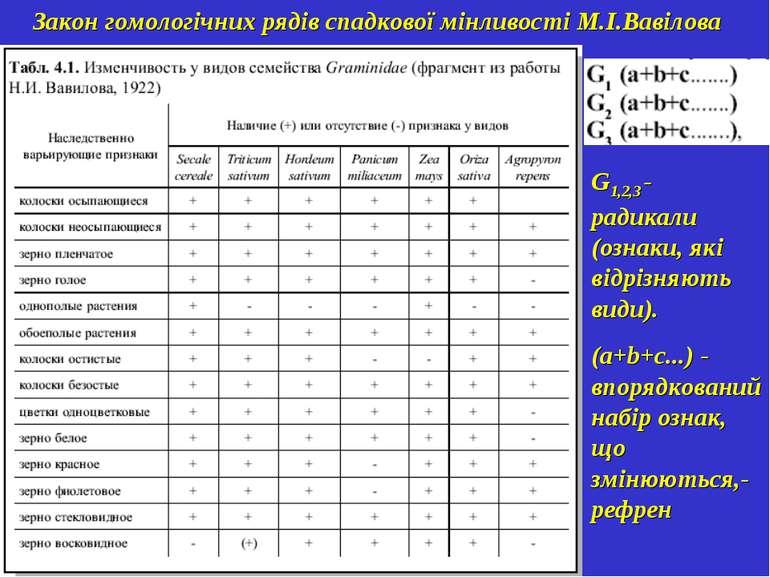 Закон гомологічних рядів спадкової мінливості М.І.Вавілова G1,2,3 - радикали ...