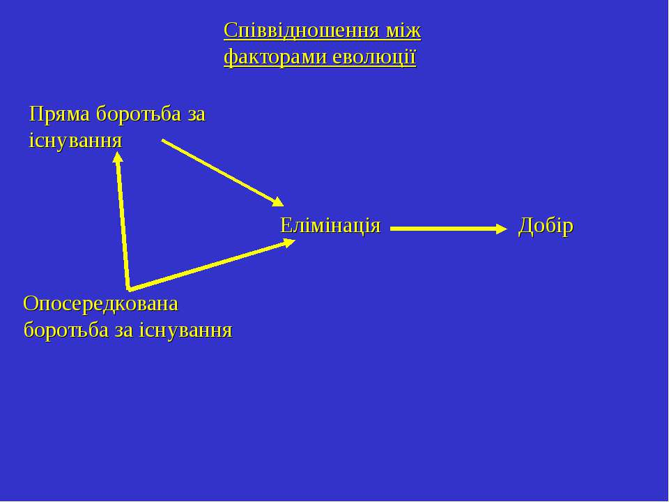 Співвідношення між факторами еволюції Пряма боротьба за існування Опосередков...
