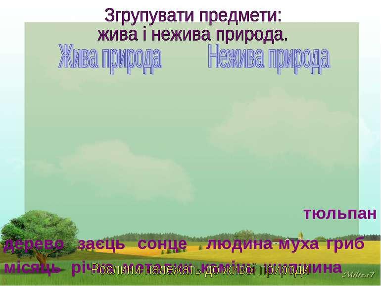 місяць річка сонце камінь дерево заєць гриб людина муха метелик тюльпан шипшина