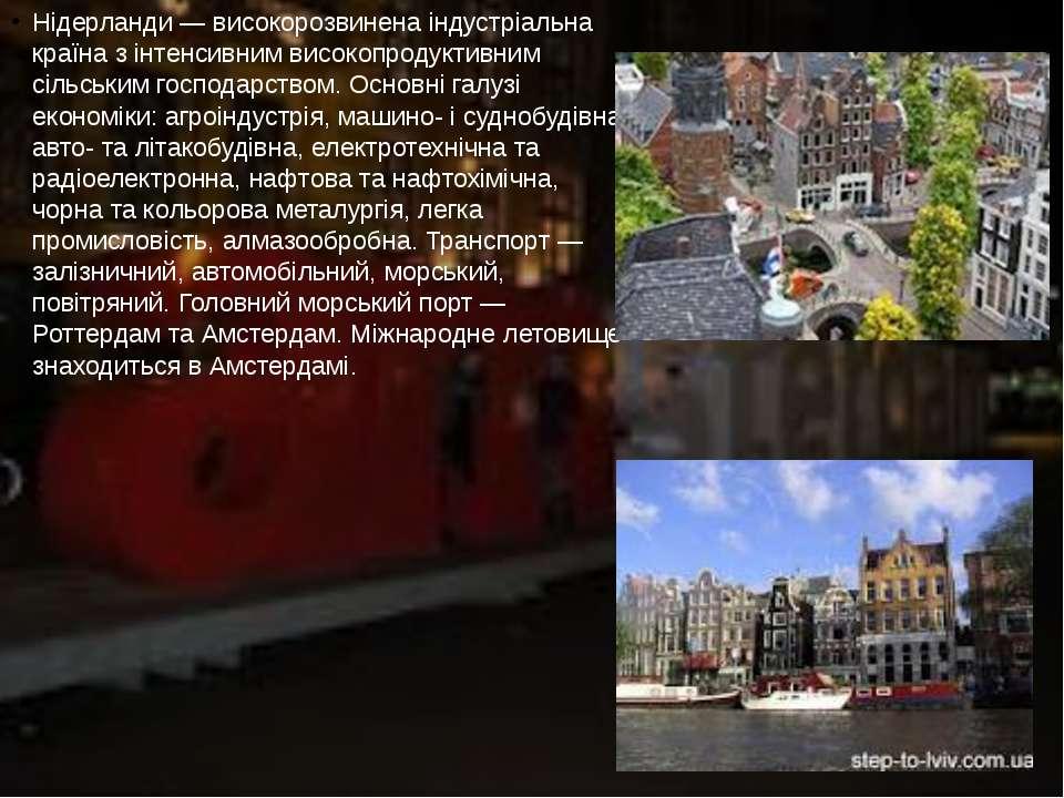 Нідерланди — високорозвинена індустріальна країна з інтенсивним високопродукт...
