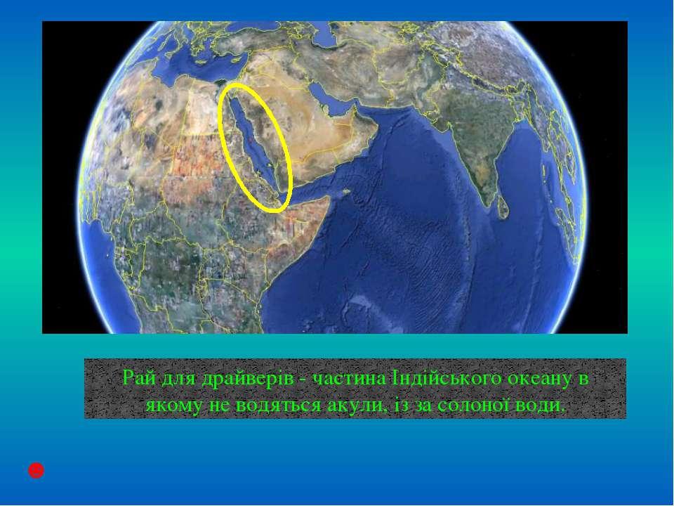 Органічний світ Індійського океану