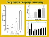 Регуляція секреції лептину