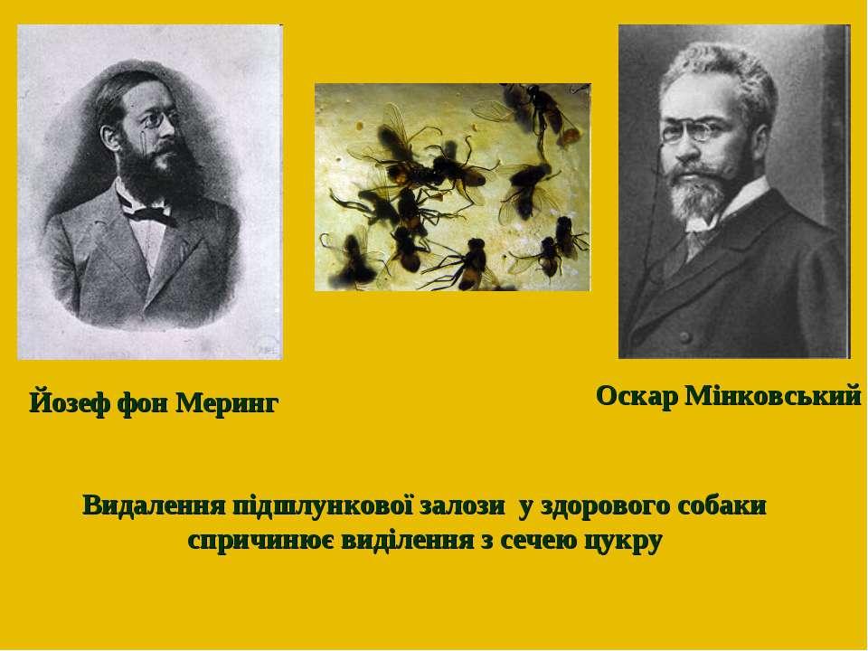 Оскар Мінковський Йозеф фон Меринг Видалення підшлункової залози у здорового ...