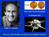 "The Nobel Prize in Physiology or Medicine 2011 ""discovery of the dendritic ce..."