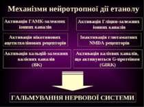 Механізми нейротропної дії етанолу Активація ГАМК-залежних іонних каналів Акт...