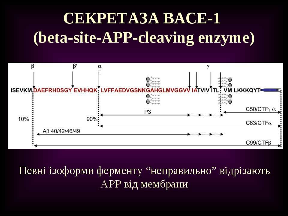 """СЕКРЕТАЗА BACE-1 (beta-site-APP-cleaving enzyme) Певні ізоформи ферменту """"неп..."""