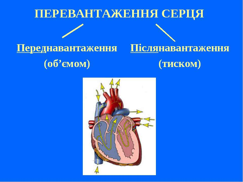 ПЕРЕВАНТАЖЕННЯ СЕРЦЯ Переднавантаження (об'ємом) Післянавантаження (тиском)