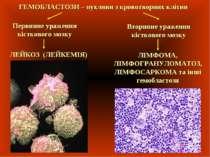 ГЕМОБЛАСТОЗИ – пухлини з кровотворних клітин Первинне ураження кісткового моз...