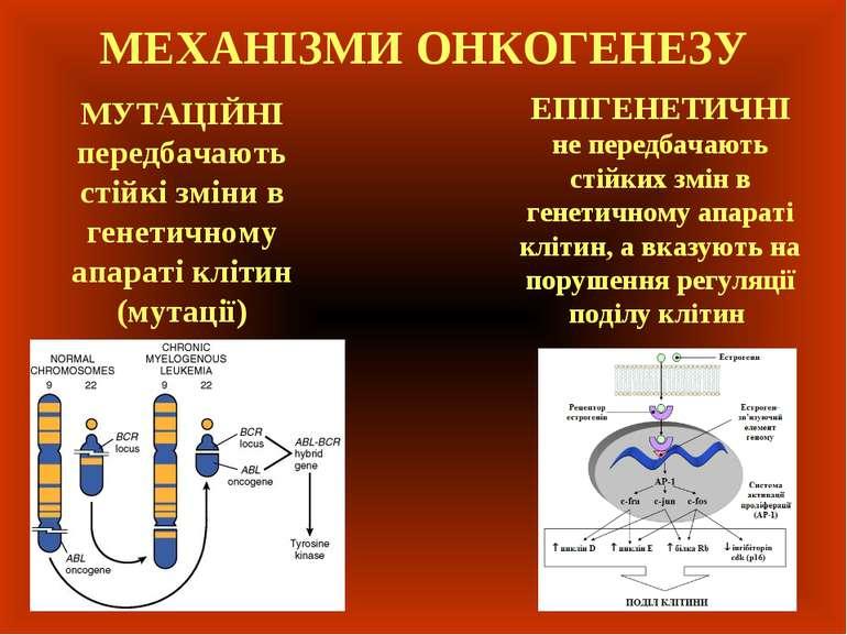 МЕХАНІЗМИ ОНКОГЕНЕЗУ ЕПІГЕНЕТИЧНІ не передбачають стійких змін в генетичному ...