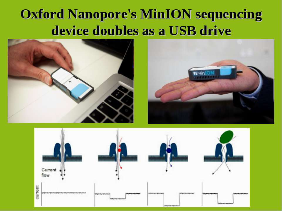 Oxford Nanopore's MinION sequencing device doubles as a USB drive