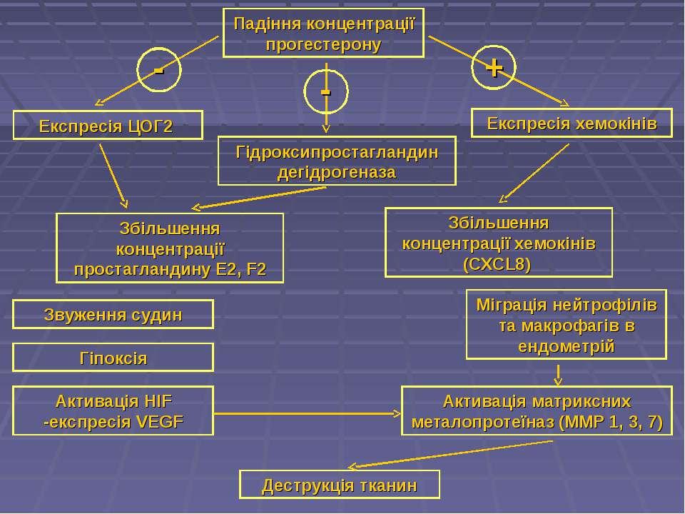Падіння концентрації прогестерону Збільшення концентрації простагландину Е2, ...