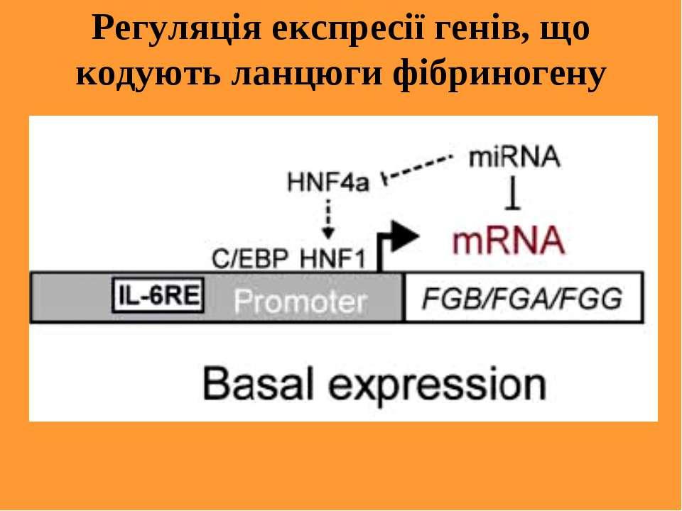 Регуляція експресії генів, що кодують ланцюги фібриногену