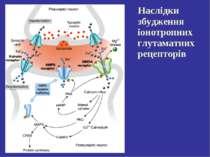 Наслідки збудження іонотропних глутаматних рецепторів
