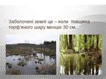 Заболочені землі це – коли товщина торф'яного шару менше 30 см. Заболочені землі