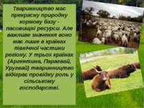 Тваринництво має прекрасну природну кормову базу - пасовищні ресурси. Але важ...