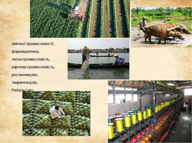 хімічної промисловості, фармацевтика, легка промисловість, харчова промислові...