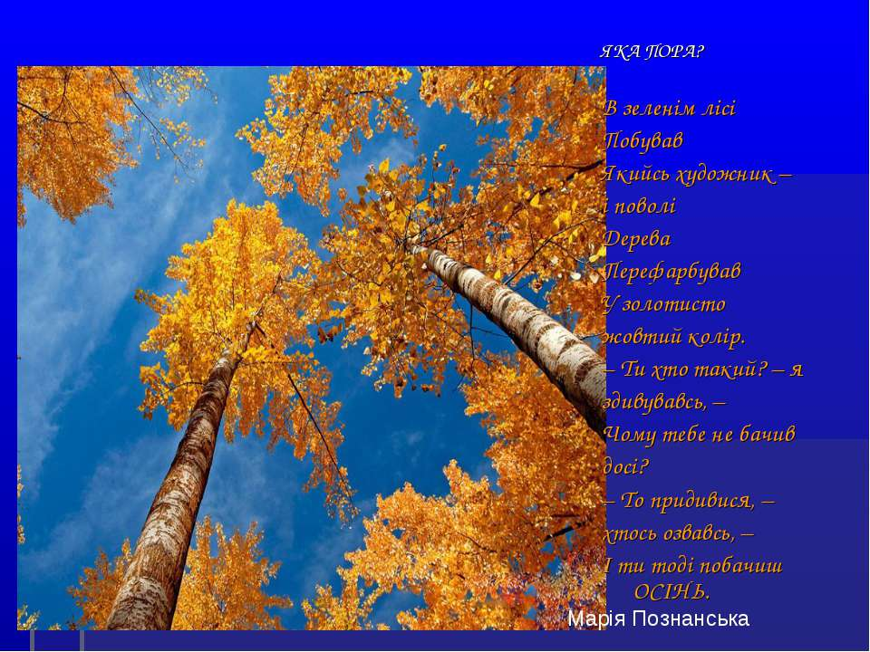 ЯКА ПОРА? В зеленім лісі Побував Якийсь художник – і поволі Дерева Перефарбув...