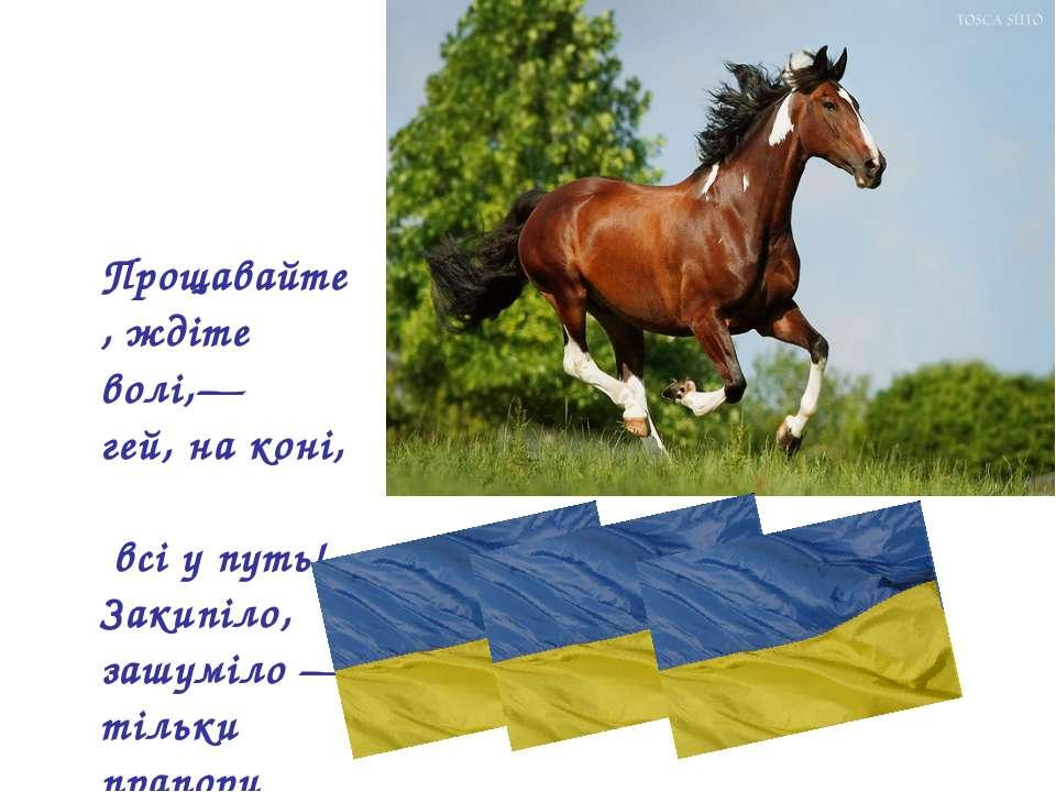 Прощавайте, ждіте волі,— гей, на коні, всі у путь! Закипіло, зашуміло — тільк...