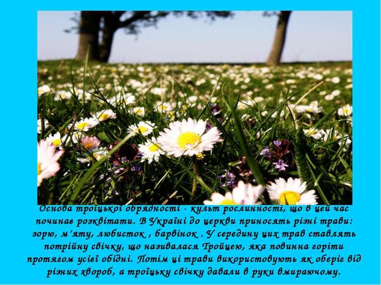 Основа троїцької обрядності - культ рослинності, що в цей час починає розквіт...