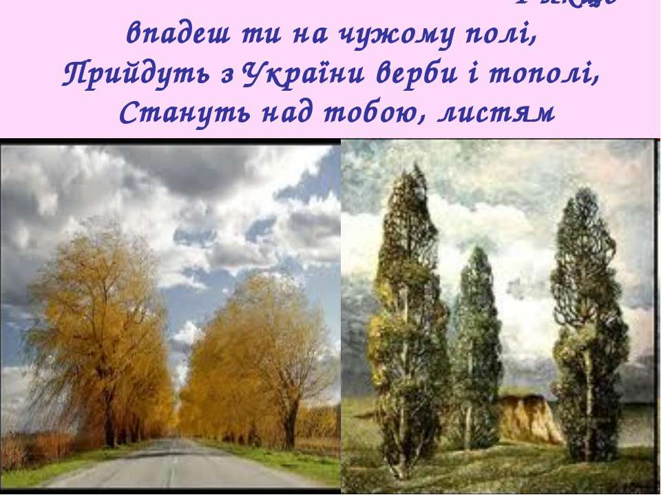 І якщо впадеш ти на чужому полі, Прийдуть з України верби і тополі, Стануть н...