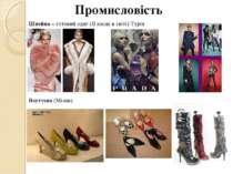 Промисловість Швейна – готовий одяг (ІІ місце в світі) Турін Взуттєва (Мілан)