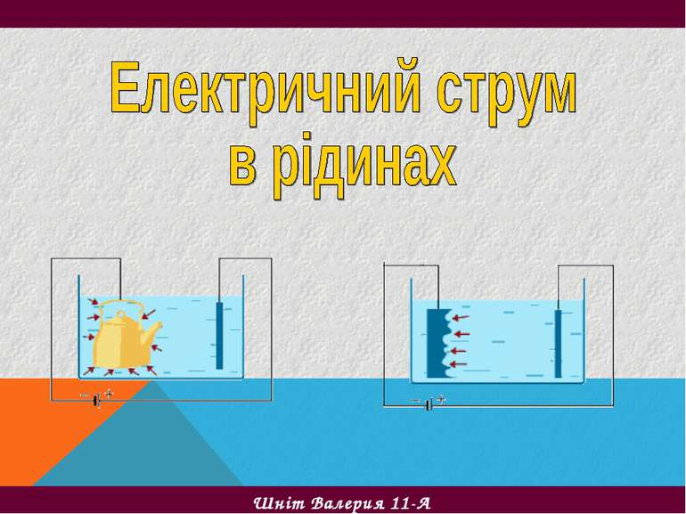 Шніт Валерия 11-А