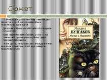 Сюжет У романі представлено чергування двох сюжетних ліній, що розвиваються п...