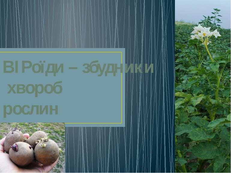 ВІРоїди – збудники хвороб рослин