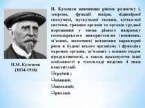 П.М. Кулєшов (1854-1936) П. Кулєшов вивчивши рівень розвитку і, зокрема, функ...