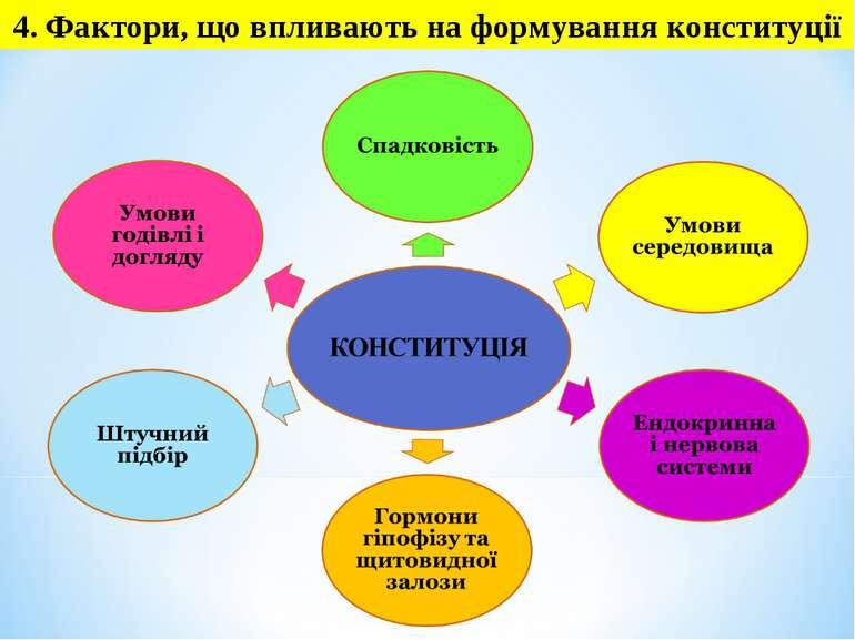4. Фактори, що впливають на формування конституції