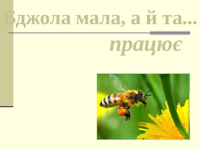 Бджола мала, а й та... працює