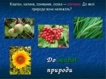 Каштан, калина, соняшник, осока — рослини. До якої природи вони належать? До ...