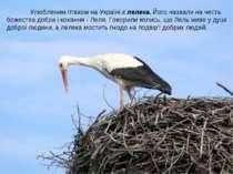 Улюбленим птахом на Україні є лелека. Його назвали на честь божества добра і ...