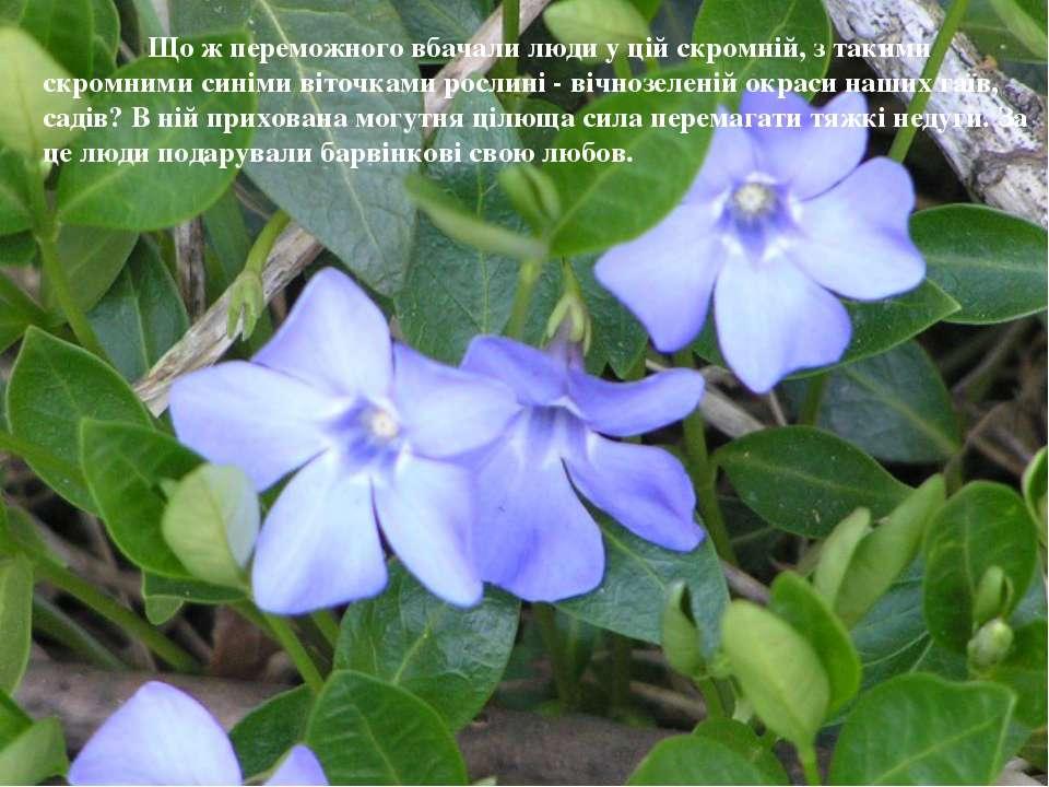 Що ж переможного вбачали люди у цій скромній, з такими скромними синіми віточ...