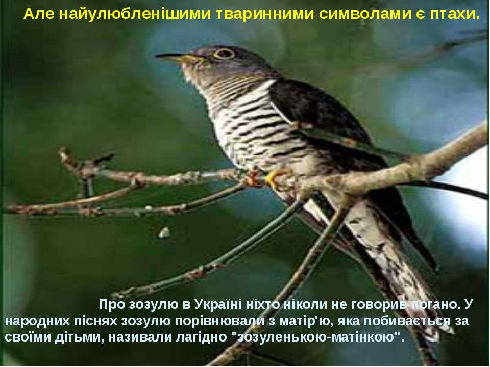 Але найулюбленішими тваринними символами є птахи. Про зозулю в Україні ніхто ...
