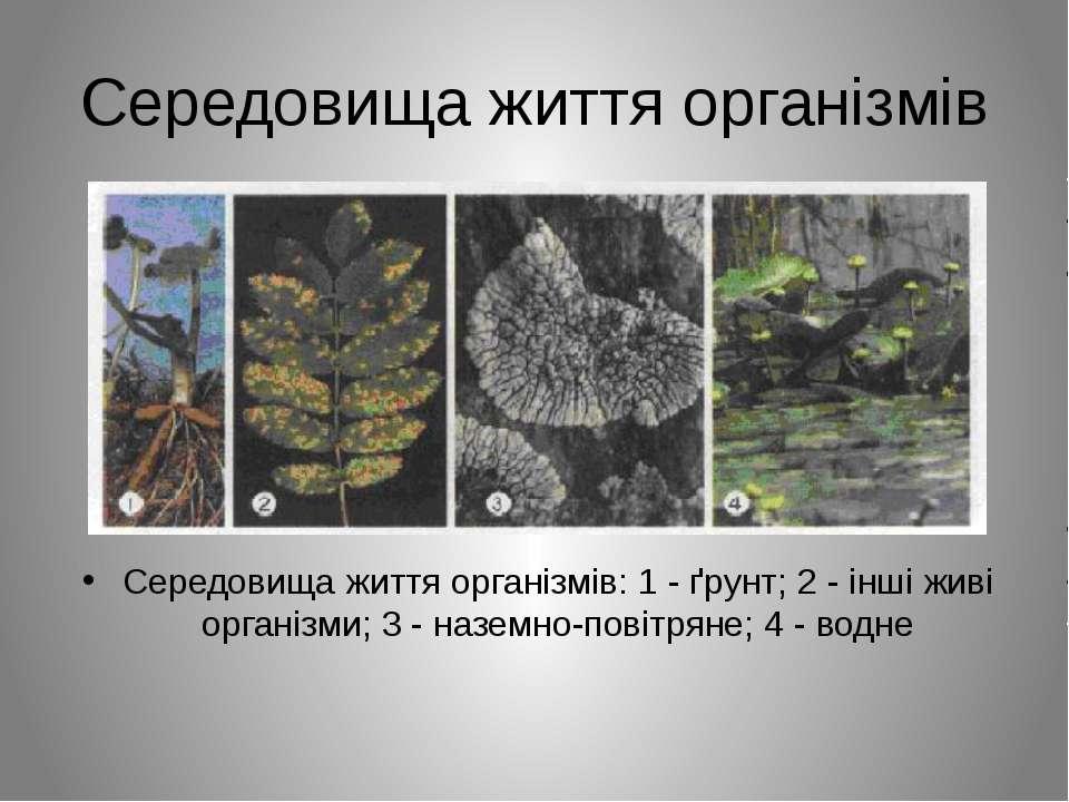 Середовища життя організмів Середовища життя організмів: 1 - ґрунт; 2 - інші ...