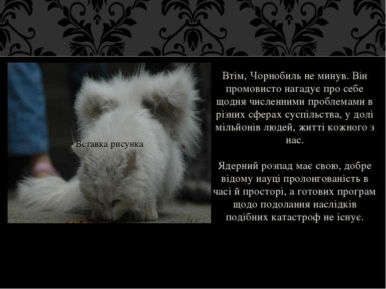 Втім, Чорнобиль не минув. Він промовисто нагадує про себе щодня численними пр...